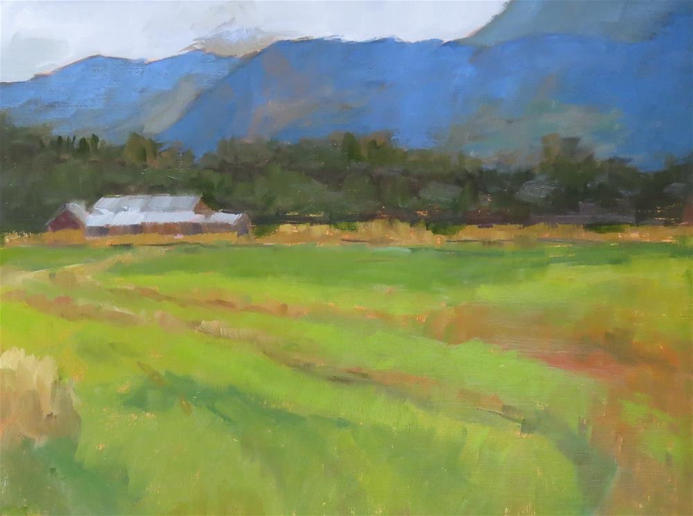 """""""Freshly Plowed Fields"""" original fine art by Pam Holnback"""