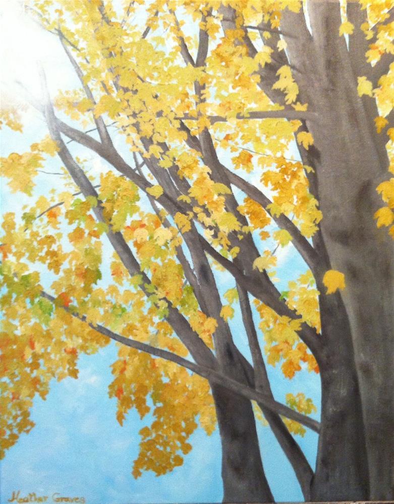 """""""Golden Maple I"""" original fine art by J H Graves"""