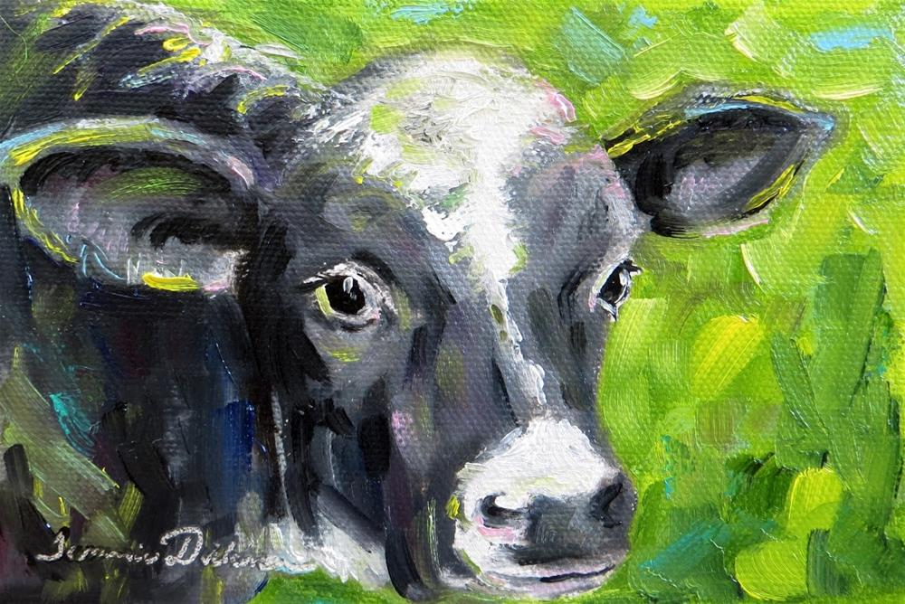 """""""Cow Face"""" original fine art by Tammie Dickerson"""