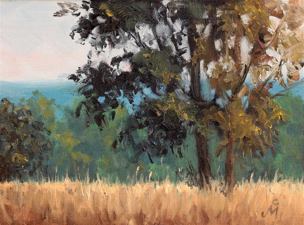"""Crisp Morning In Kanha"" original fine art by Mandar Marathe"
