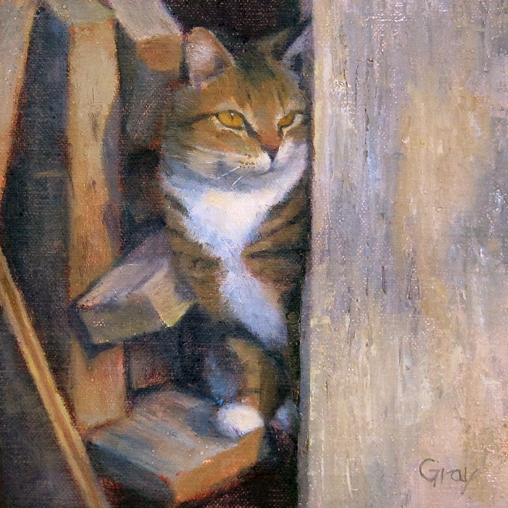 """""""Cat in the Shed"""" original fine art by Naomi Gray"""