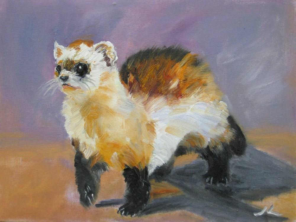 """""""Ferret"""" original fine art by Julia Lu"""