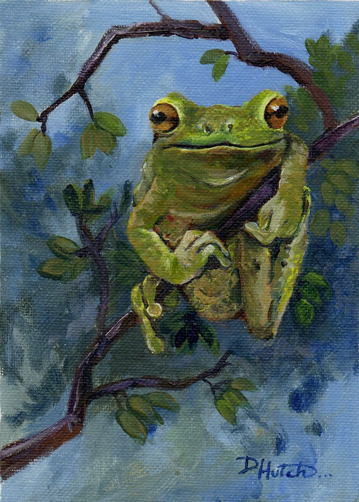 """Frog #2"" original fine art by Diane Hutchinson"