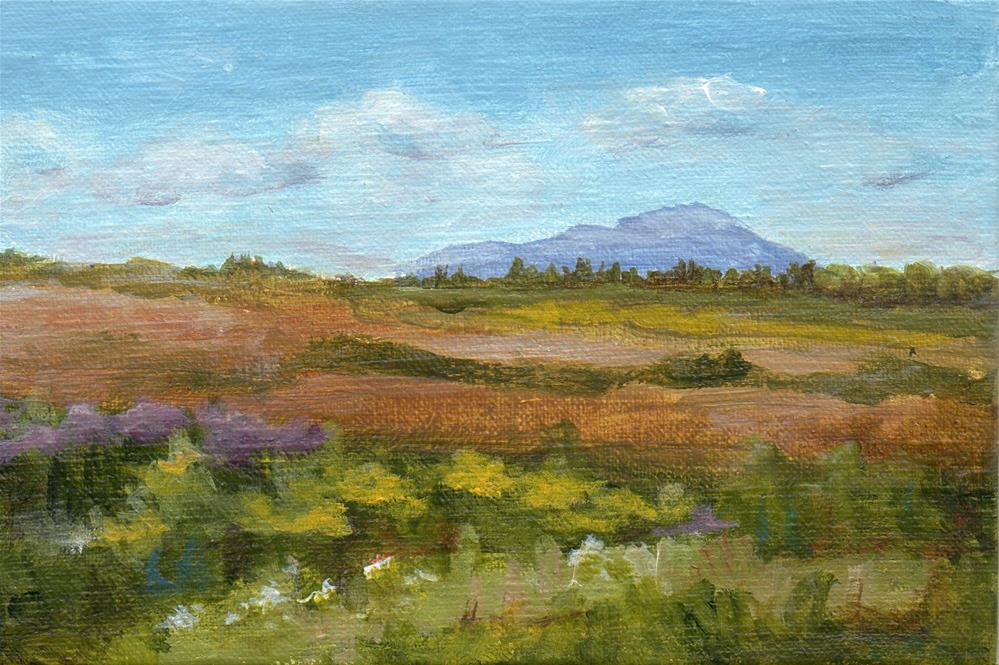 """Summer View"" original fine art by Debbie Shirley"