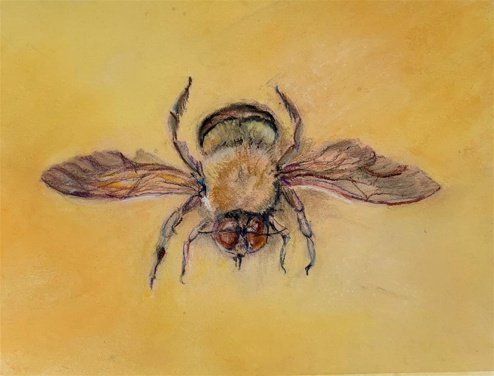 """Carpenter Bee"" original fine art by Jean Krueger"