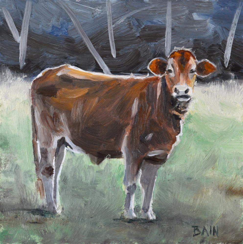 """Cow no. 1"" original fine art by Peter Bain"
