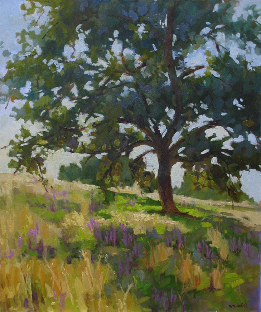 """Lupines and Oak"" original fine art by Mary Mulvihill"