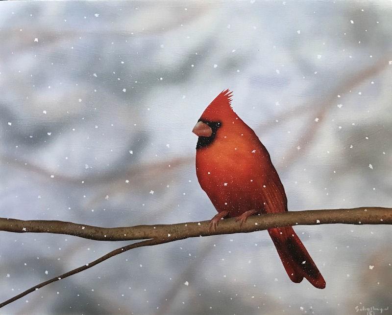 """""""Waiting Cardinal"""" original fine art by Fred Schollmeyer"""