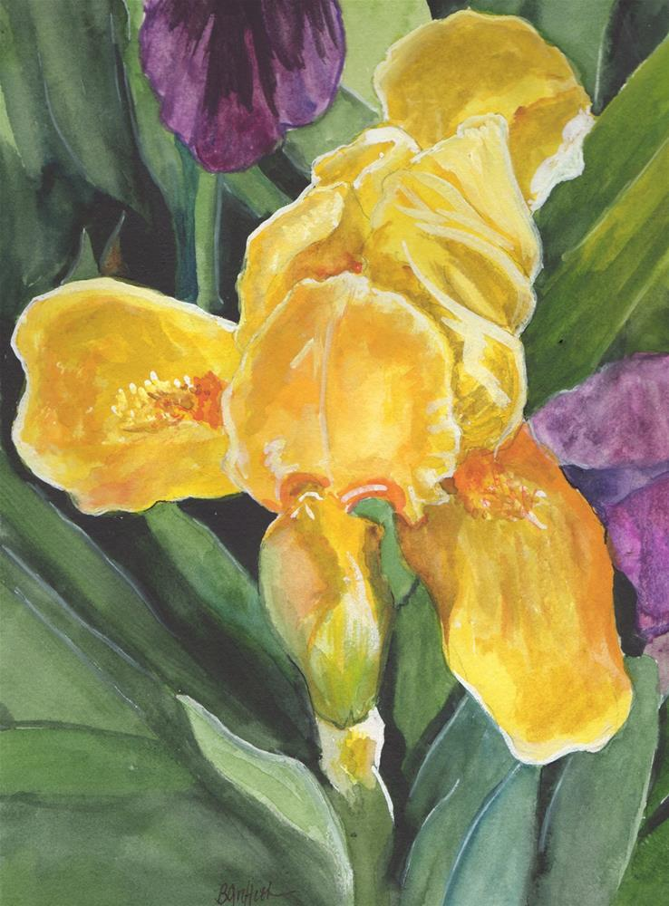 """Yellow Iris"" original fine art by Bunny Griffeth"