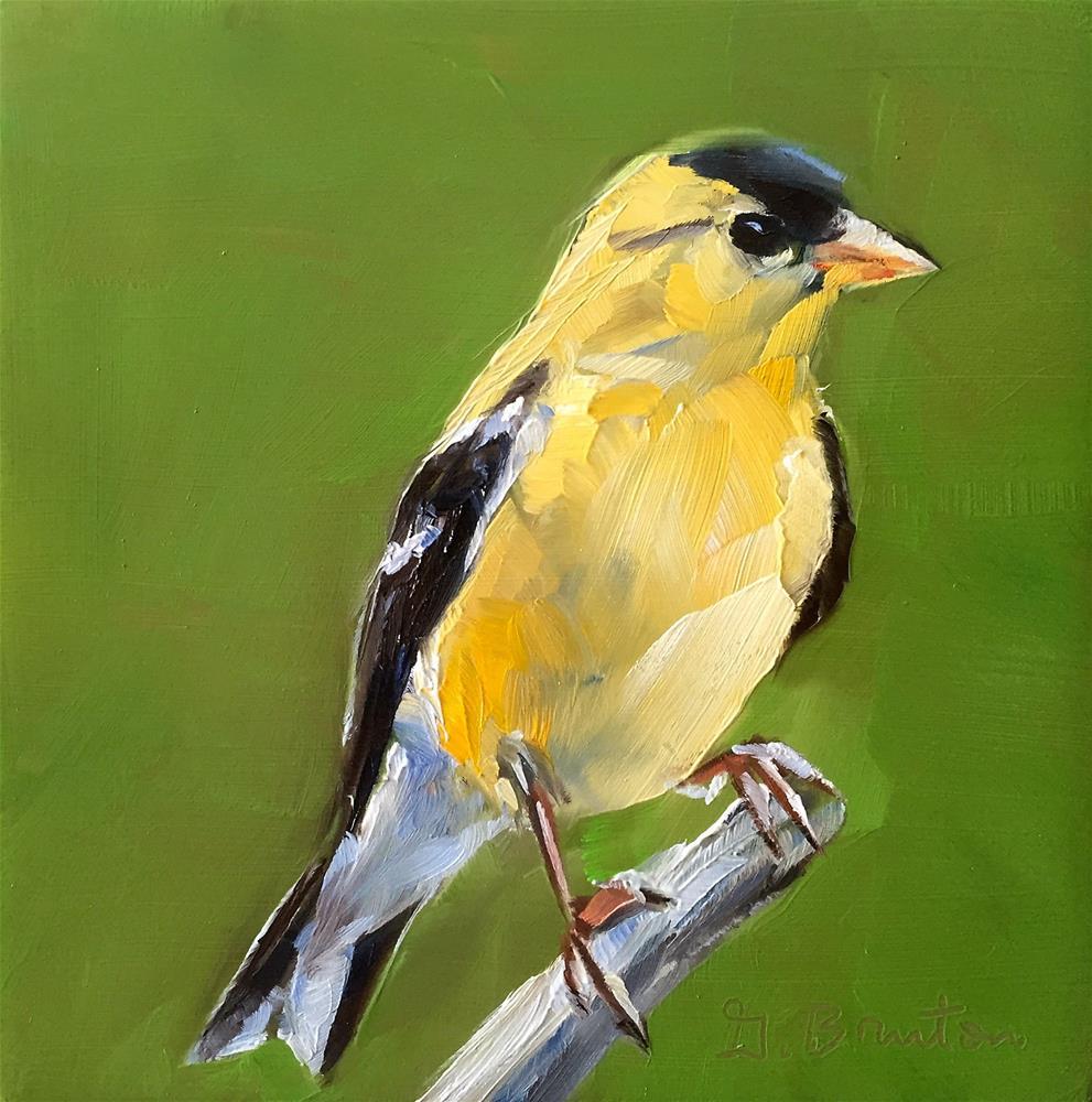 """""""Goldfinch"""" original fine art by Gary Bruton"""