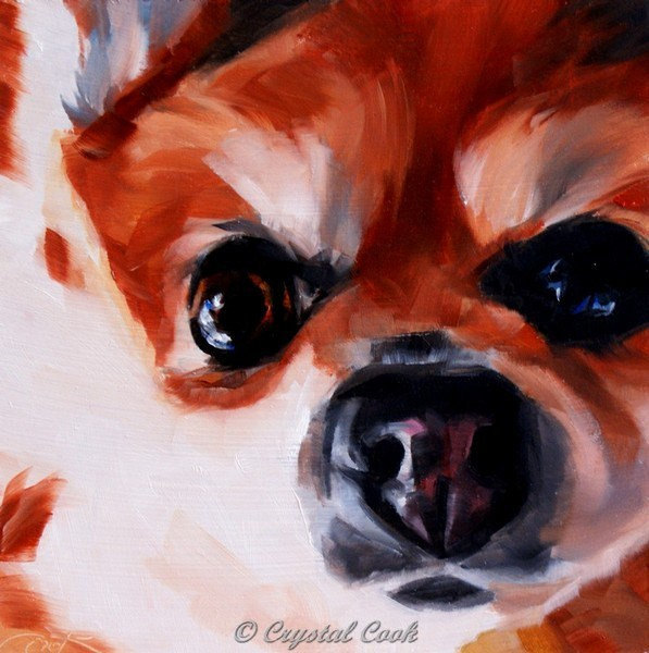 """No Concept of Personal Space"" original fine art by Crystal Cook"