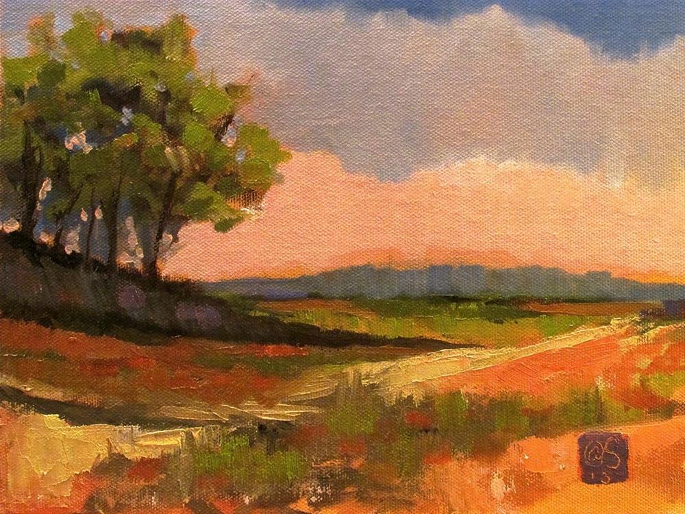 """""""Field at the Fifth Hour"""" original fine art by Aurelio Saiz"""
