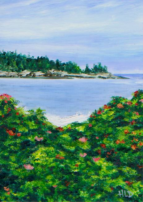 """Study for Indian Point"" original fine art by Heather Douglas"