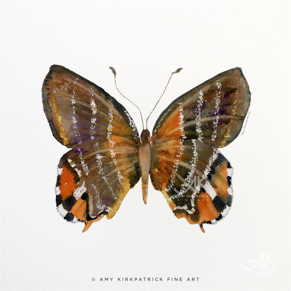 """""""#60 Euselasia Butterfly #0370"""" original fine art by Amy Kirkpatrick"""