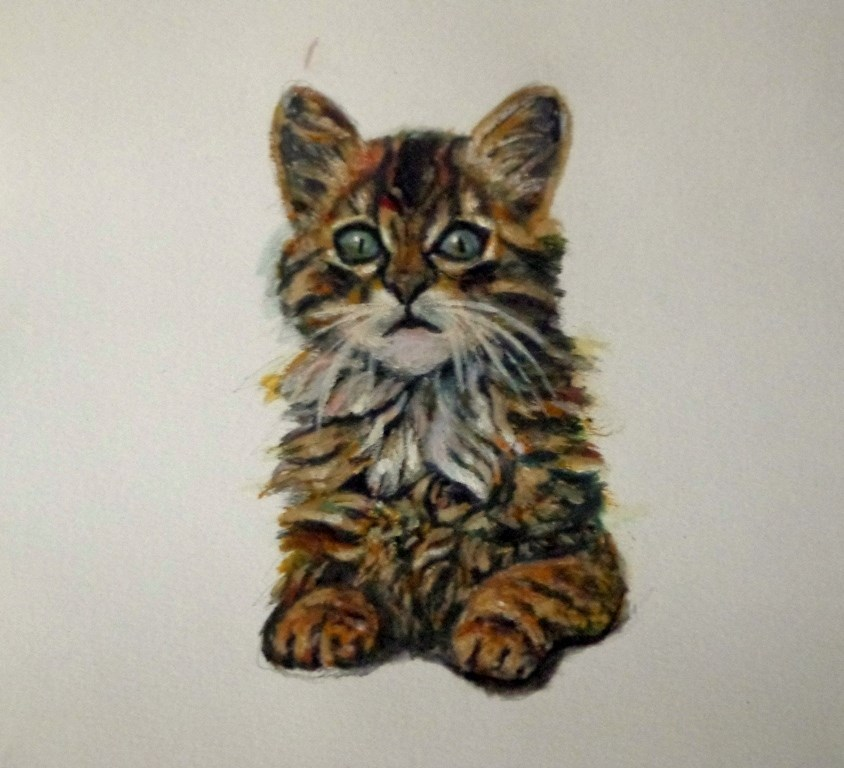"""Kitten"" original fine art by Maria Z."