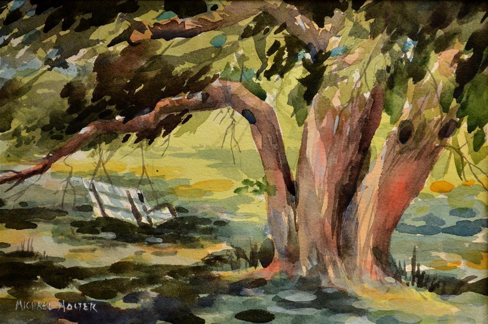 """Swing in the Bodark"" original fine art by Michael Holter NWS"