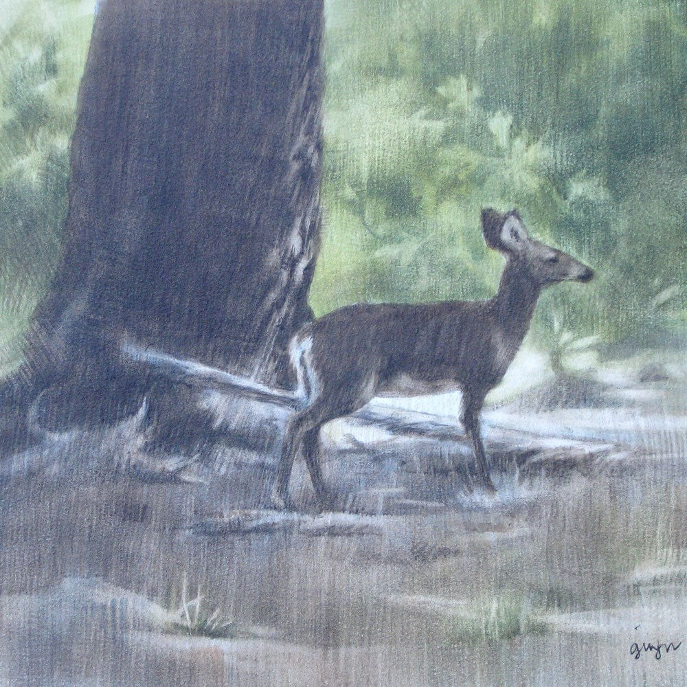 """""""In the Forest"""" original fine art by Ginger Pena"""