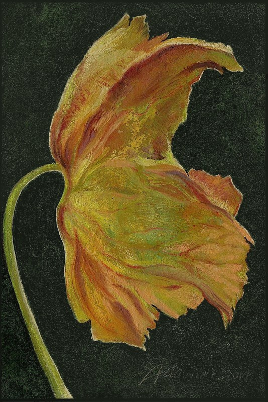 """Dried Leaf #3"" original fine art by Carol L Adamec"