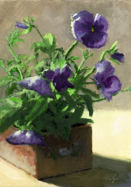 """Pansies in Bloom"" original fine art by Linda Jacobus"