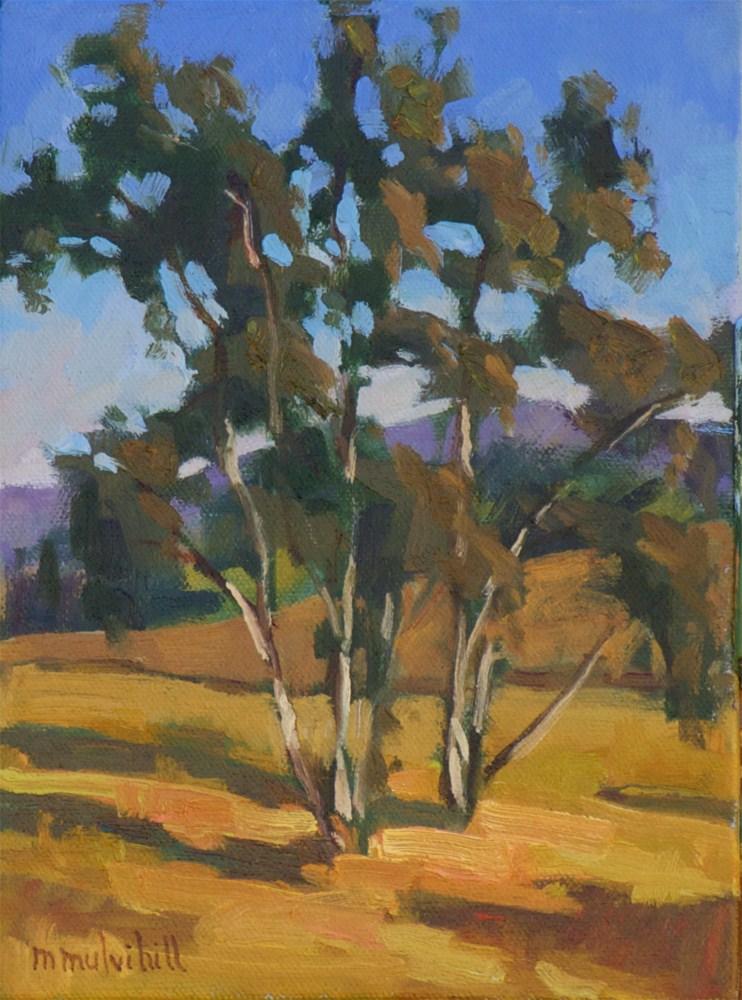 """Late Afternoon Eucalyptus"" original fine art by Mary Mulvihill"
