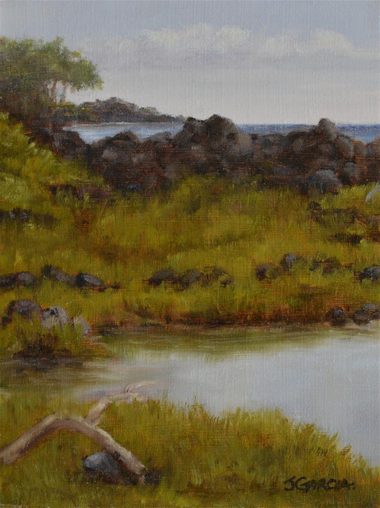 """""""Puna Hot Ponds"""" original fine art by Jeannie Garcia"""