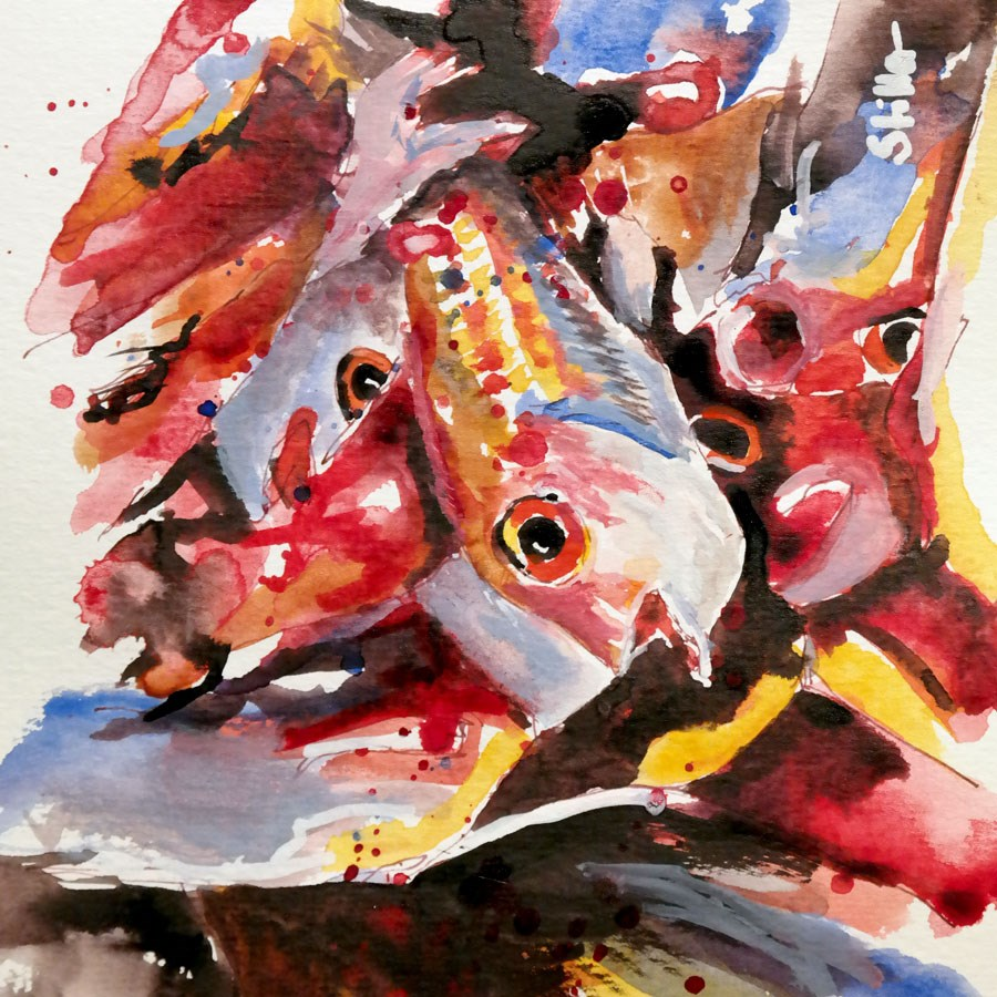 """2336 Colorfish"" original fine art by Dietmar Stiller"