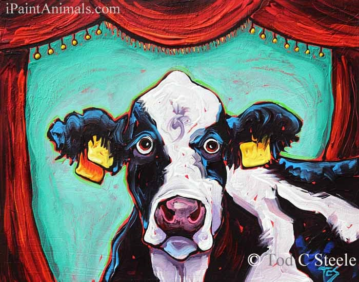 """""""Cow Painting: Performance Anxiety by Tod C Steele"""" original fine art by Tod Steele"""