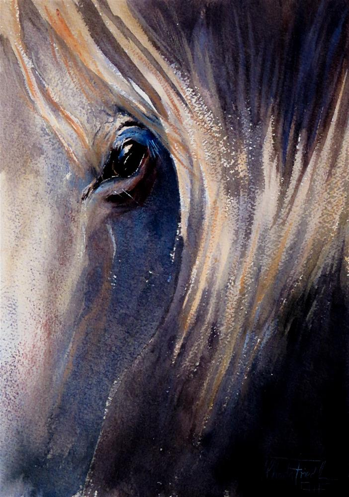 """a horse´s eye"" original fine art by Christa Friedl"