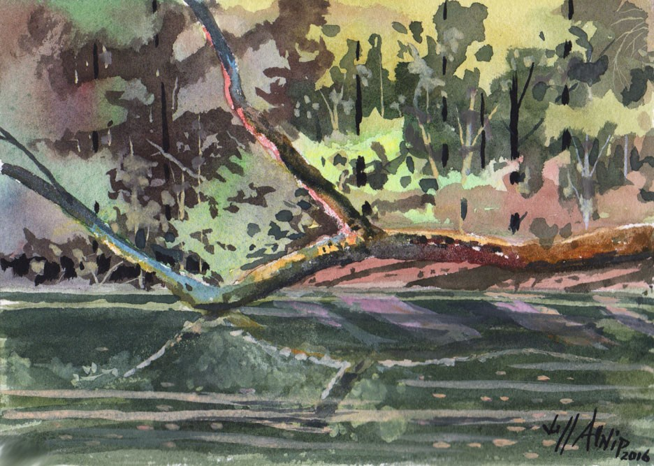 """Turtle Bayou"" original fine art by Jeff Atnip"