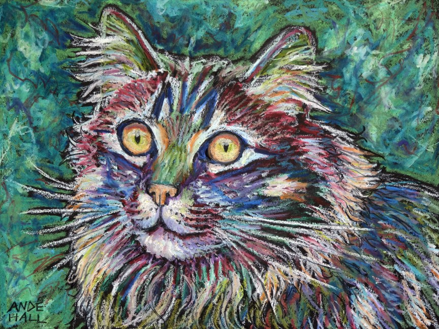"""""""Cat in Colors"""" original fine art by Ande Hall"""