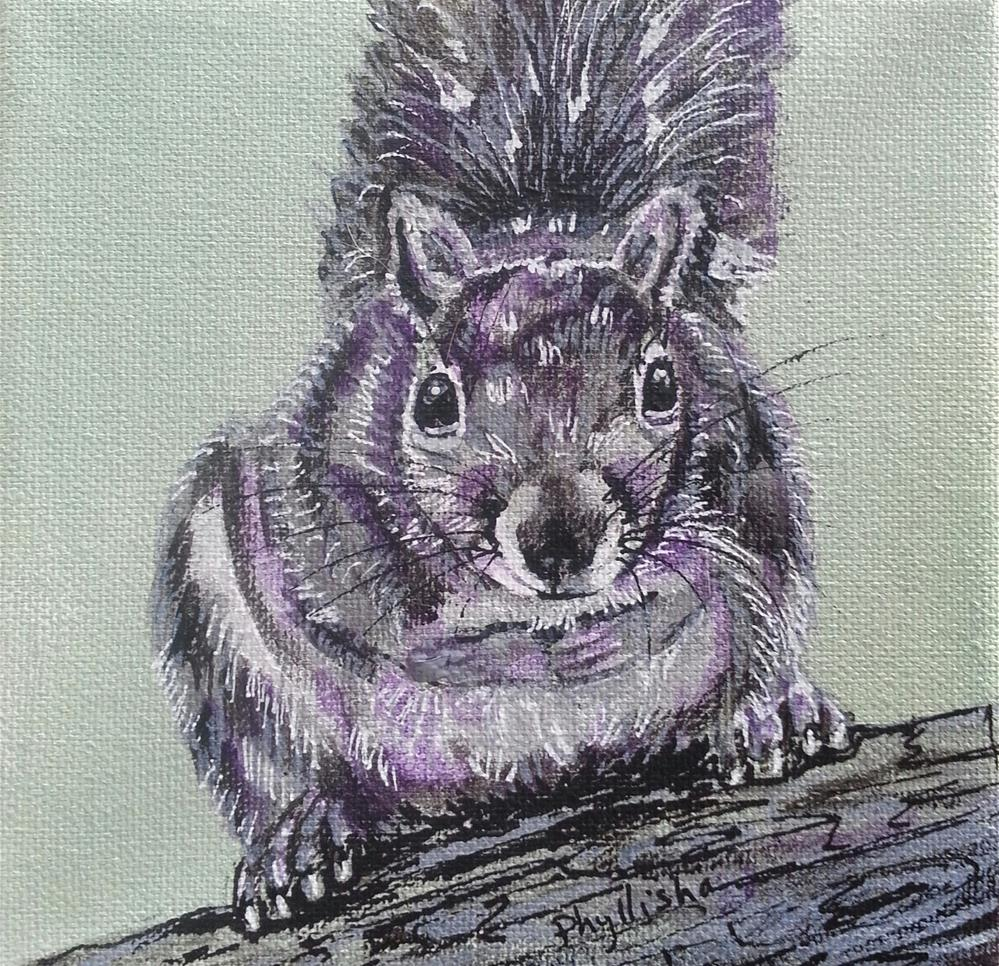 """Gray Squirrel"" original fine art by Phyllisha Hamrick"