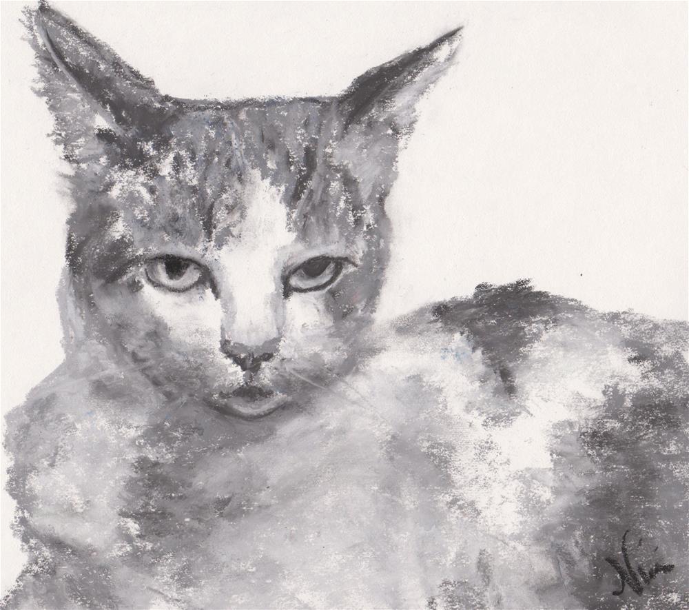"""""""Displeased"""" original fine art by Niki Hilsabeck"""
