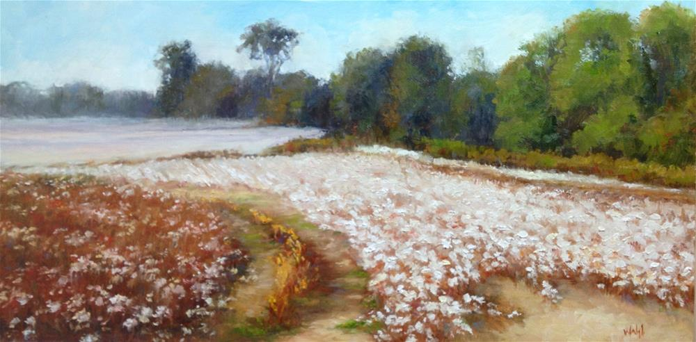 """Cotton- Southern Snow"" original fine art by Nancy Wahl"
