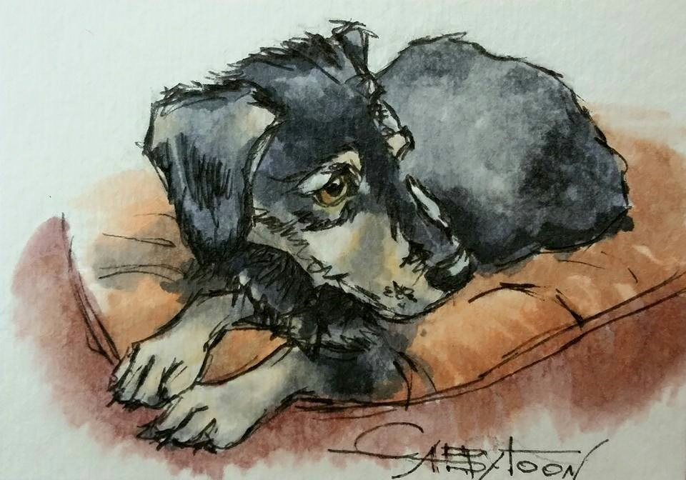 """Puppy ACEO"" original fine art by Gabriella DeLamater"