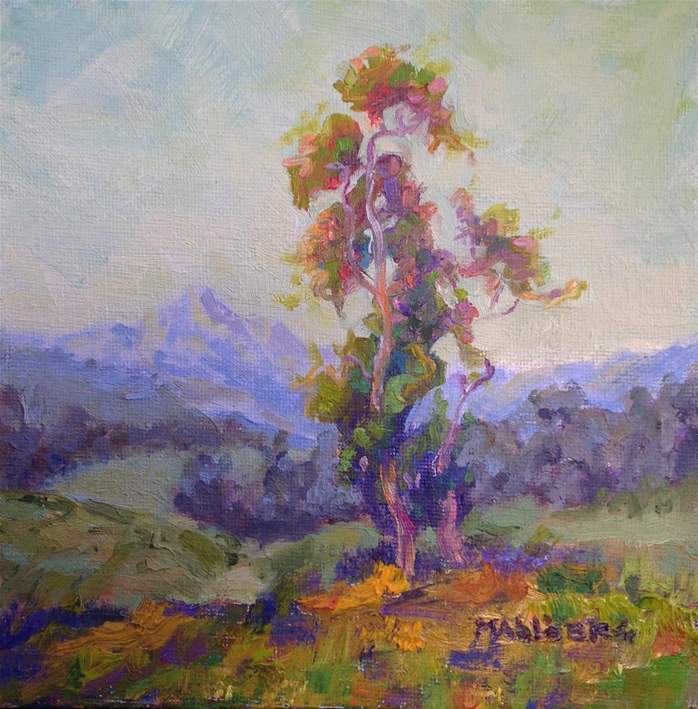 """""""Eucalyptus Dream, James 3:18"""" original fine art by Cynthia Mahlberg"""