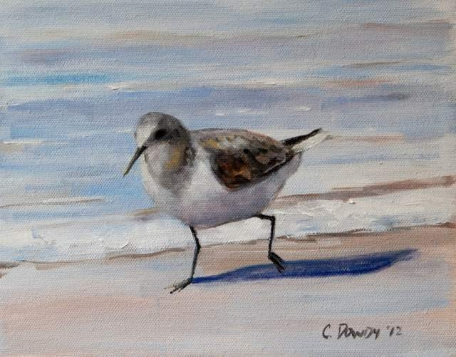 """Seabird Series I"" original fine art by Christina Dowdy"