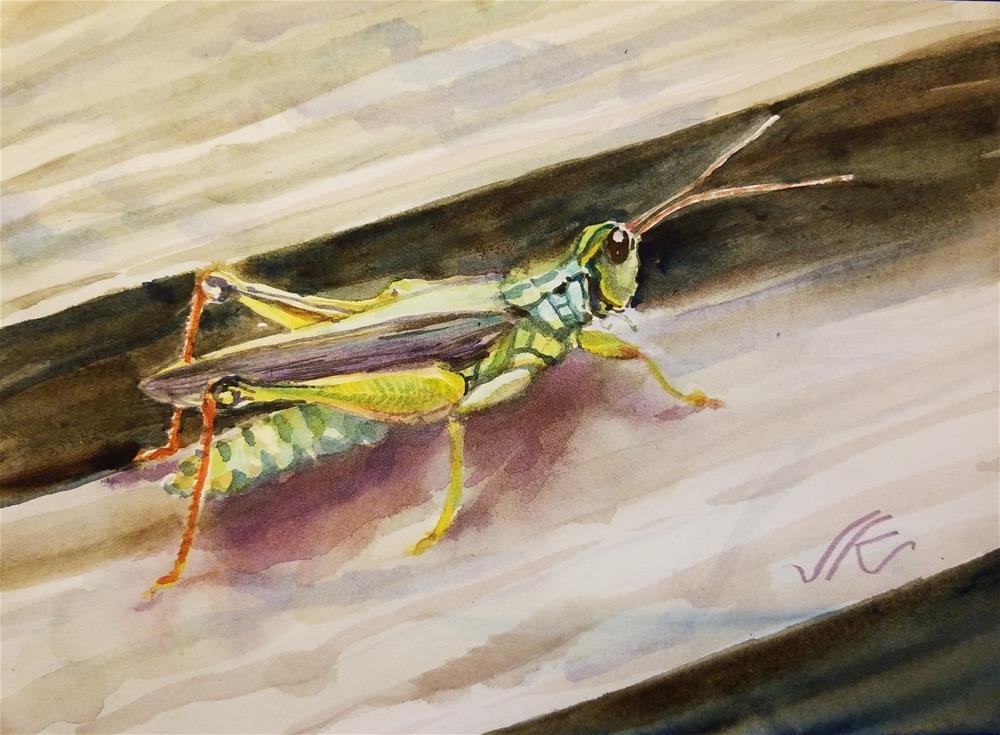 """Grasshopper"" original fine art by Jean Krueger"