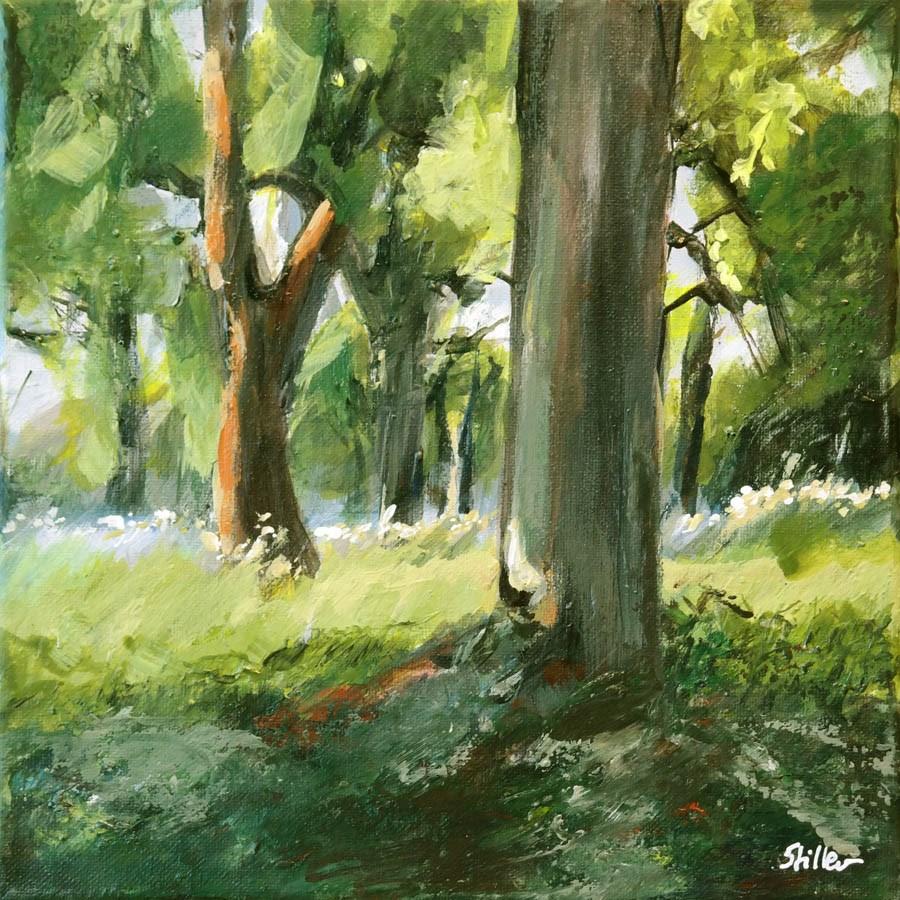 """1759 Tree Shadow"" original fine art by Dietmar Stiller"