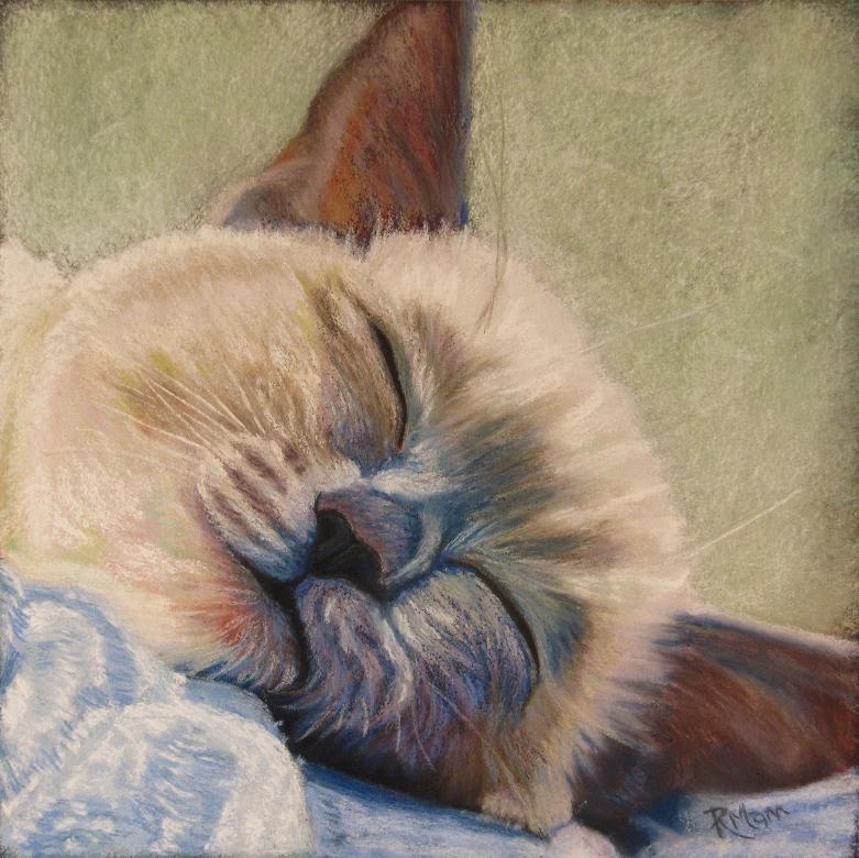 """""""Snooze"""" original fine art by Ruth Mann"""