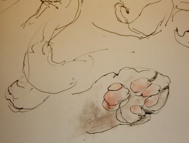 """Paw"" original fine art by Mitsuru Cope"