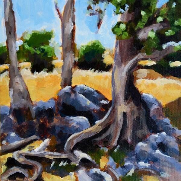 """1074 Shadow Tree"" original fine art by Dietmar Stiller"