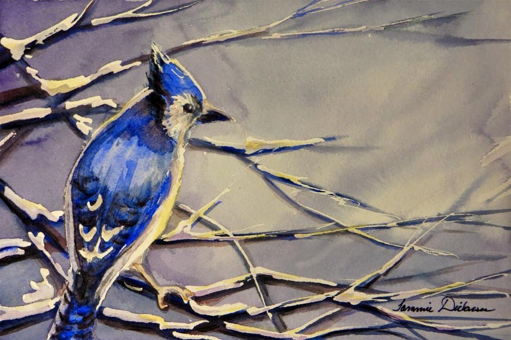 """January Blue Jay"" original fine art by Tammie Dickerson"