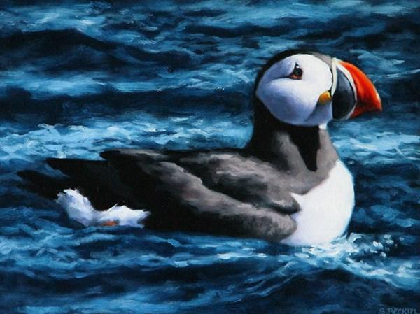 """Atlantic Puffin"" original fine art by Sarah Becktel"