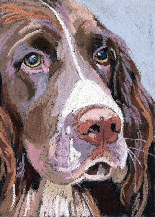 """Takeyce's dog – facebook friends"" original fine art by Ria Hills"