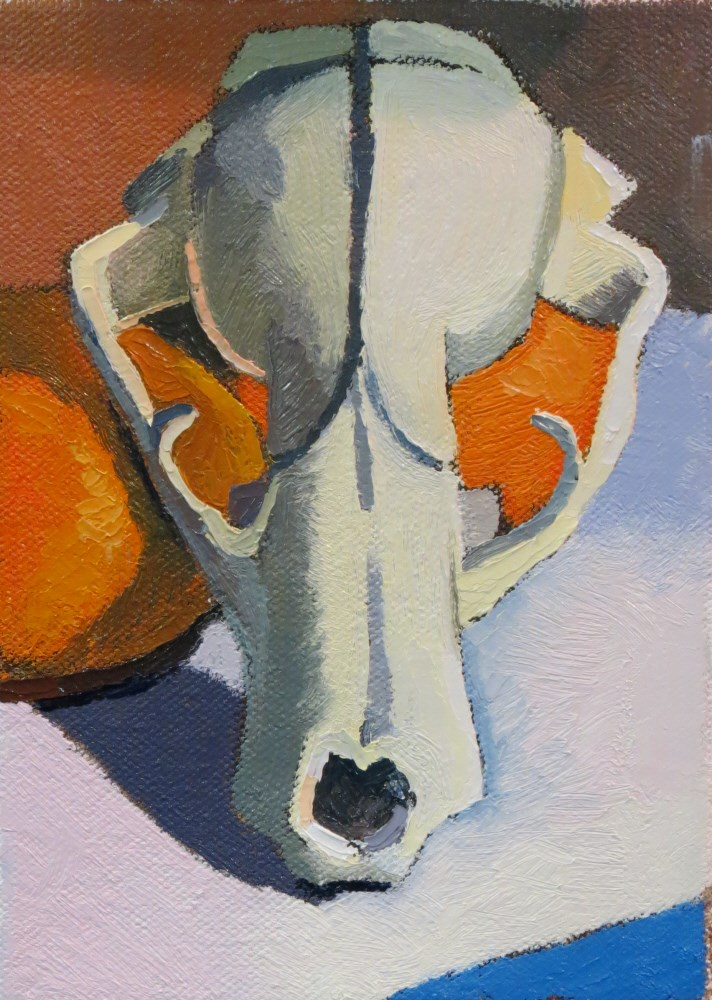 """Possum Skull"" original fine art by Joan Wiberg"