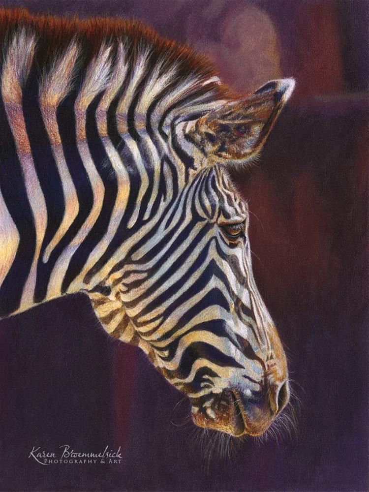 """""""Zebra"""" original fine art by Karen Broemmelsick"""