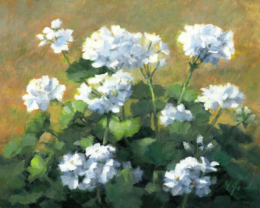 """""""Geraniums in White"""" original fine art by Linda Jacobus"""