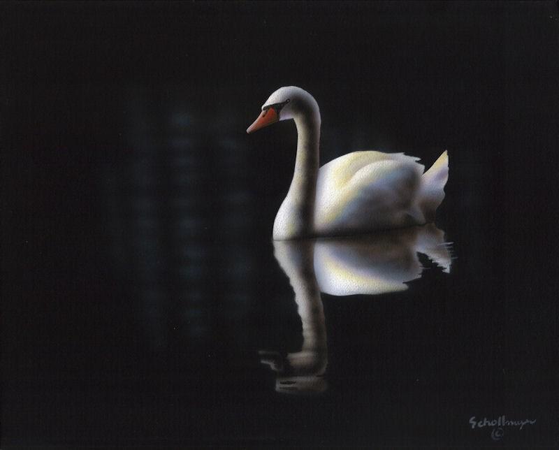 """Late Night Swim"" original fine art by Fred Schollmeyer"