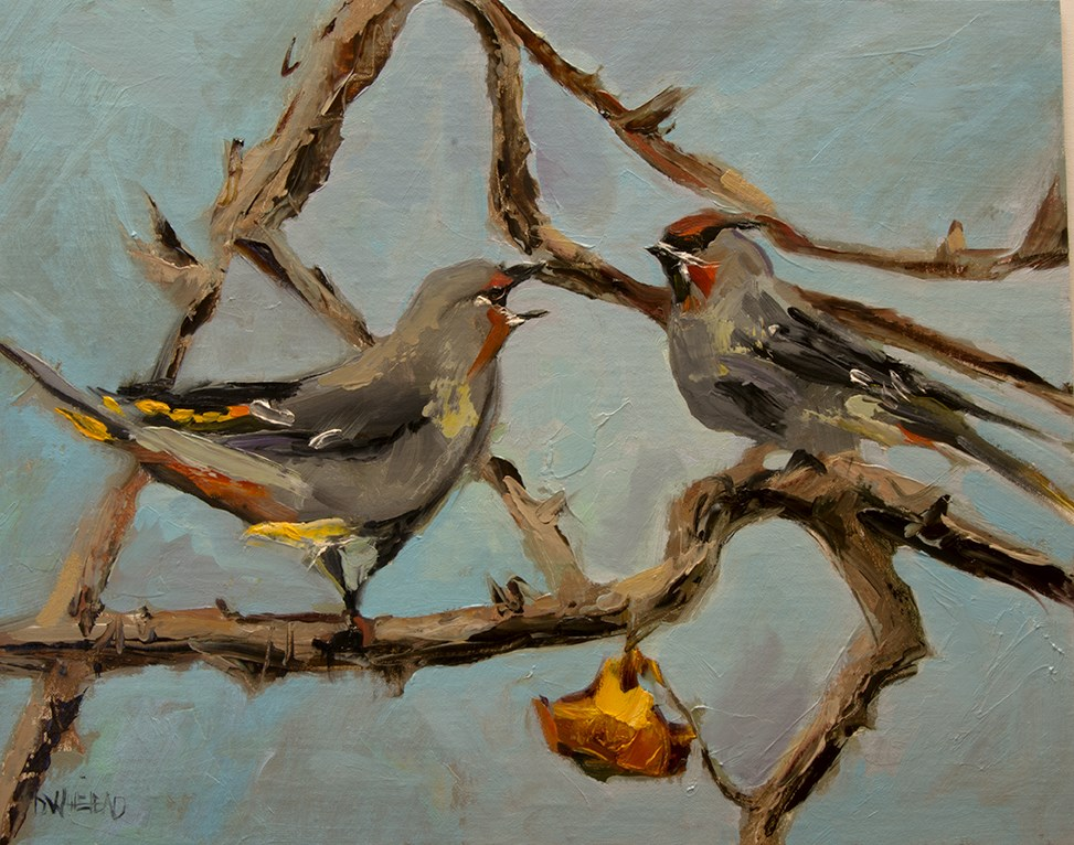 """Wax Wing Bird"" original fine art by Diane Whitehead"