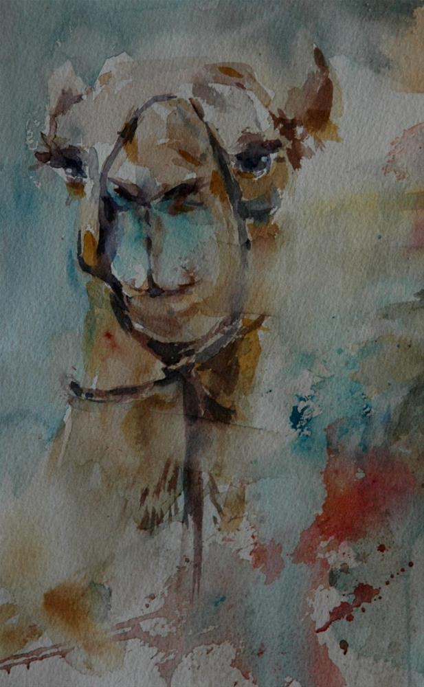 """From Al Ain Camel racetrack 2"" original fine art by Midori Yoshino"